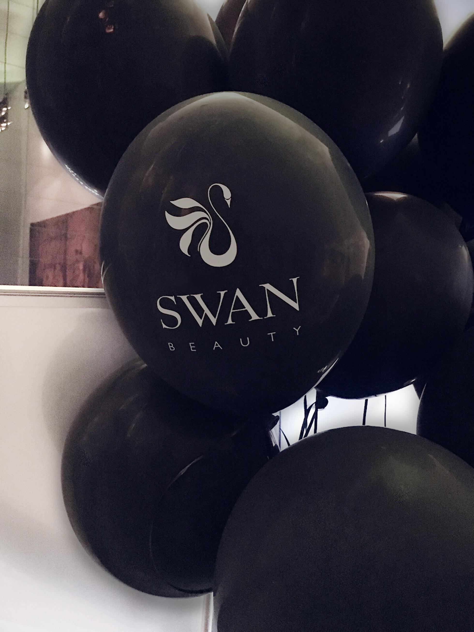 swan beauty sk dreamtour
